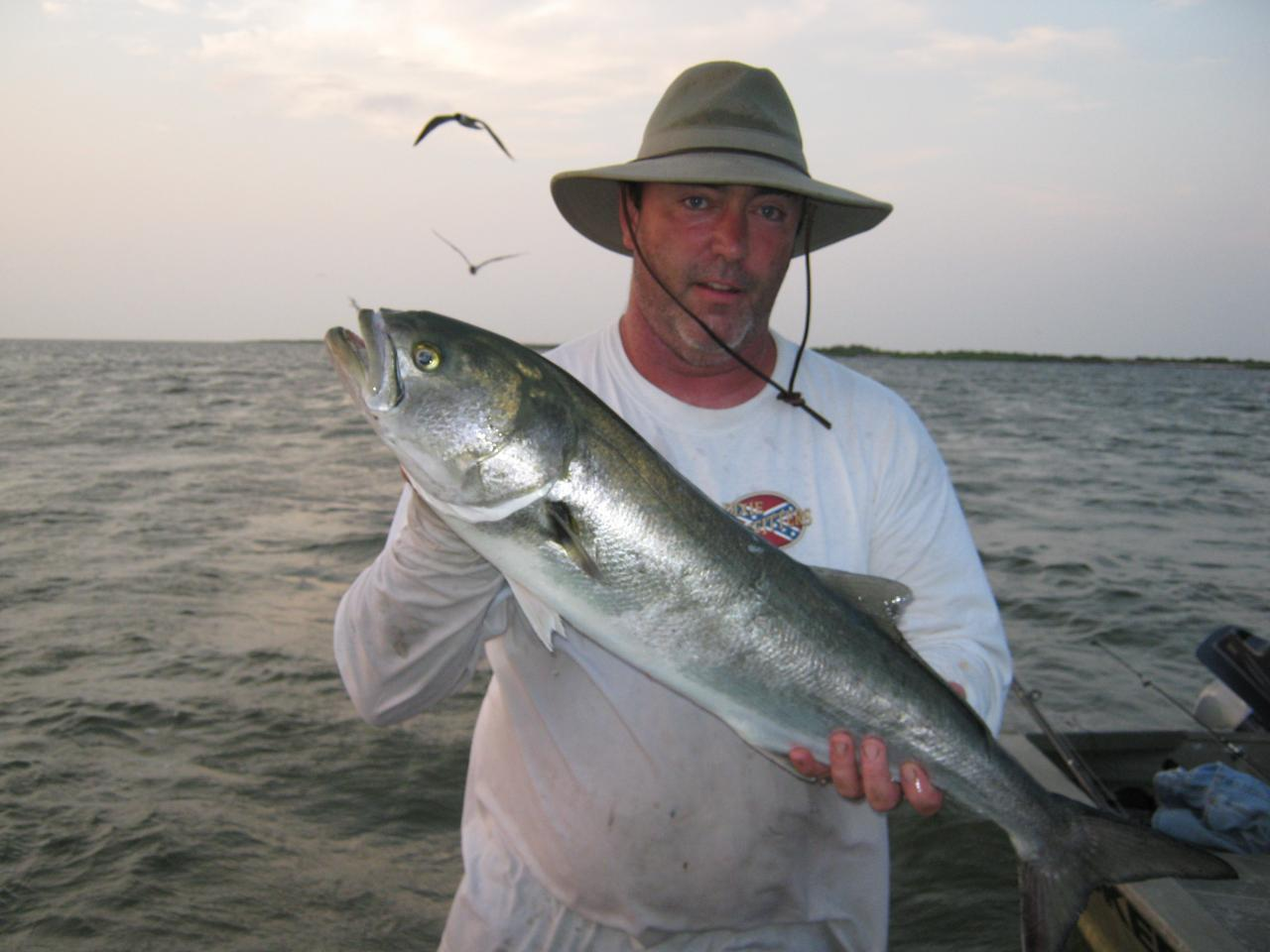 Capt froggy 39 s hunting fishing guide service fishing for Fishing in duck nc